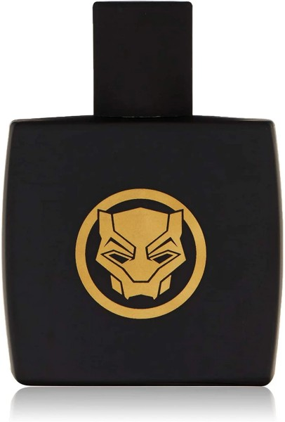 Black Panther for Kids